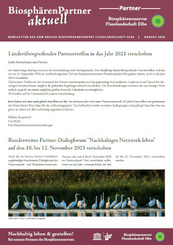 Titelbild Partner-Newsletter 2020-08